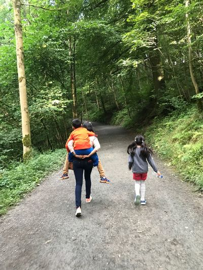 Tree Forest Real People Leisure Activity Casual Clothing Walking Full Length Nature Day Togetherness Backpack Lifestyles Men Adventure Women Hiking Growth Healthy Lifestyle Friendship