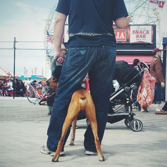 Brighton Beach series, three Vscocam VSCO Brightonbeach Newyorkcity newyork nyc boardwalk dog streetphotography usa latergram