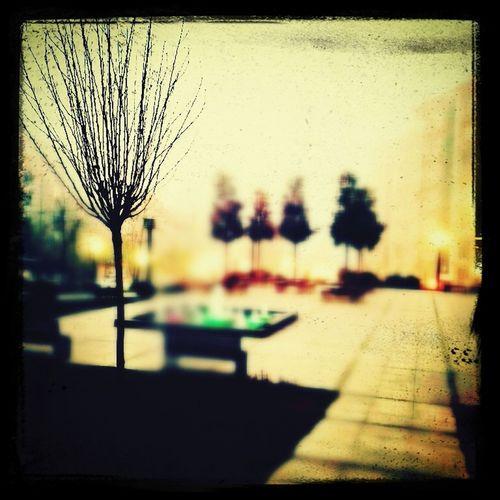 Libadiye Parkı sisli görünüm...