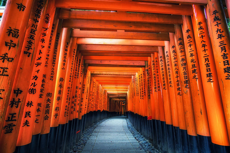 fushimi inari taisha torii gates. Famous fushimi inari is located in kyoto japan. Architectural Column Architecture Asian  Built Structure Communication Day Fushimi In A Row Inari Inari Shrine Indoors  Japan Kyoto No People Orange Color Place Of Worship Religion Shrine Spirituality Text The Way Forward Tourism Travel Travel Destinations Wood - Material