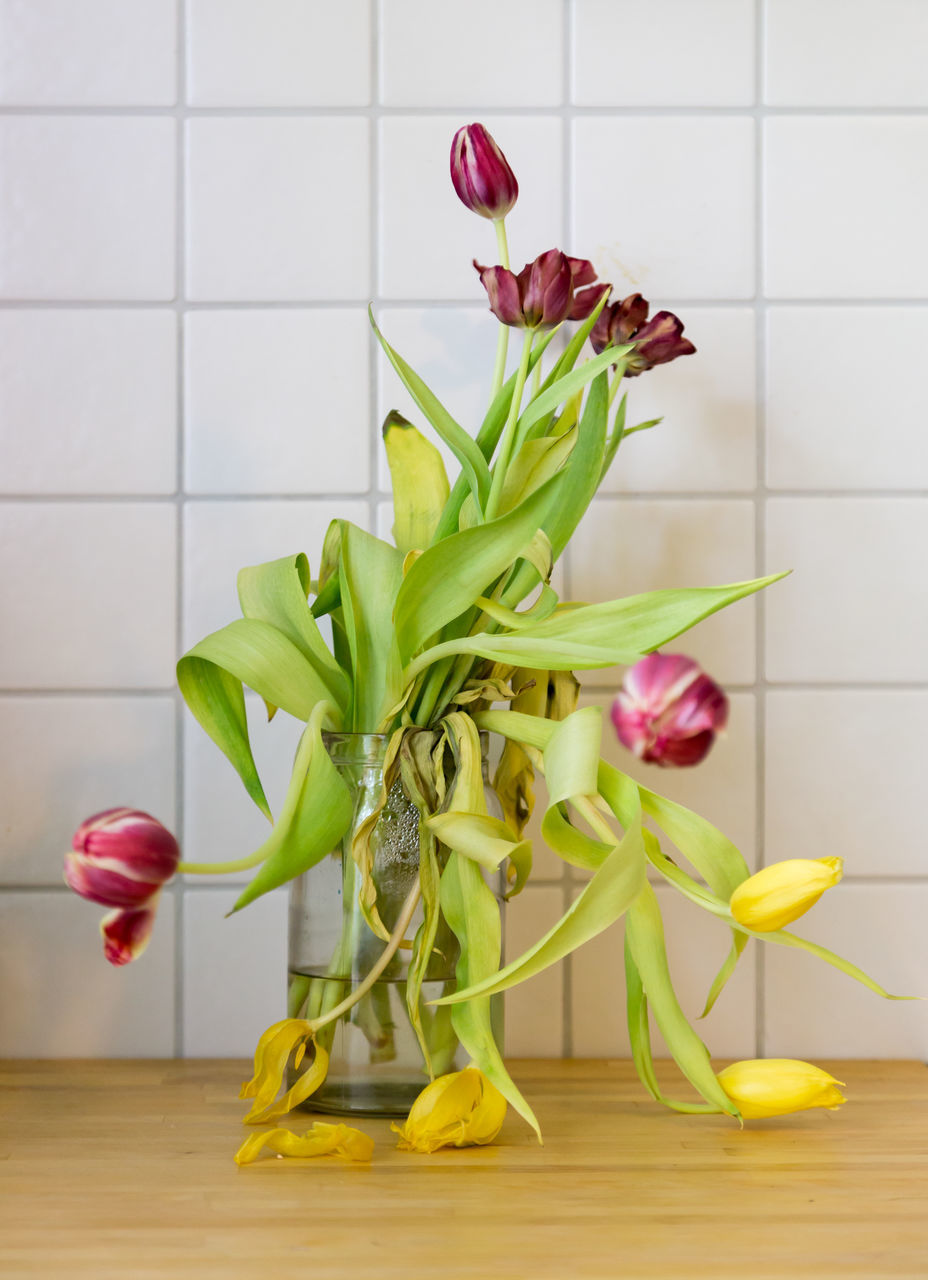 flower, vase, freshness, tulip, no people, indoors, yellow, close-up, fragility, food, flower head, day