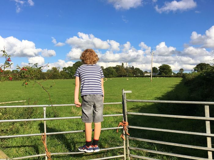 Full Length Leisure Activity Lifestyles Childhood Casual Clothing Sky Grass Rear View Park - Man Made Space Green Color Field Cloud - Sky Playing Cloud Person Innocence Outdoors Day