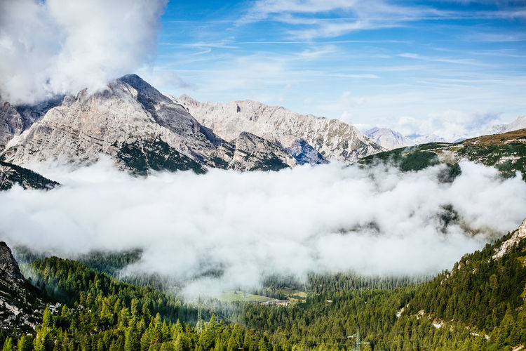 foggy valley surrounded by mountains Top Trees Wood Blue Clouds Fog Foggy Forest Landscape Mountain Range Mountains Peak Sky Valley