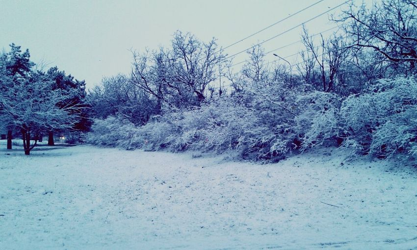 Winter in my city.