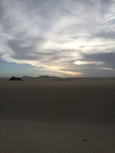 Sand Dune Desert Water Sunset Arid Climate Flamingo Sand Low Tide Sea Dramatic Sky