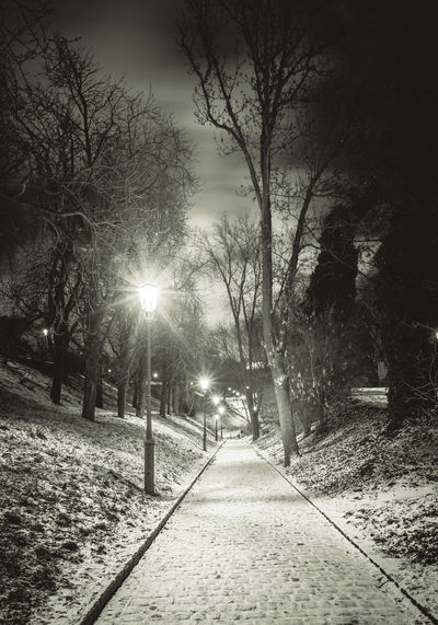 Vyšehrad walk