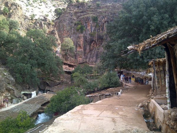 site touristique au sources oum rabie a khenifra aux maroc Architecture Beauty In Nature Bridge - Man Made Structure Built Structure Cliff Day Incidental People Mountain Nature Outdoors People Real People Road Rock - Object Scenics Tree