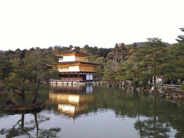 Kyoto,japan Kyoto Temple Kinkakuji Kinkakuji Temple Kinkakuzikinka Kinkakuji Temple Of Japan Kinkaku-ji Kinkaku-ji Temple Kinkaku-ji Golden Pavilion
