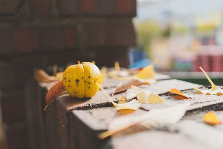 Close-up of yellow autumn leaves on table