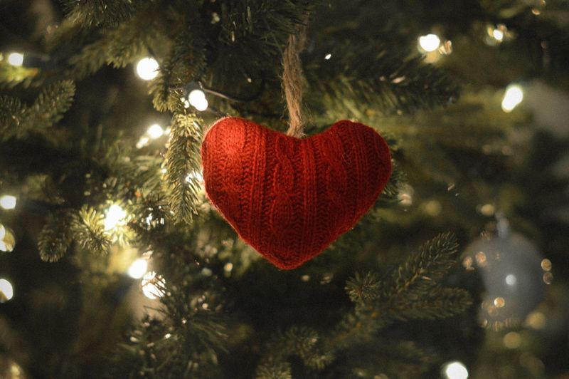 Close-up of red heart shape on tree