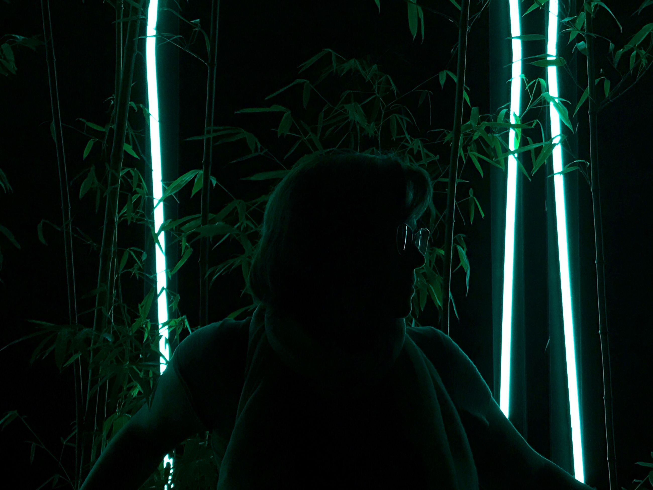 illuminated, real people, one person, lifestyles, green color, night, leisure activity, lighting equipment, light - natural phenomenon, headshot, dark, glowing, indoors, rear view, standing, portrait, light, men, nightlife
