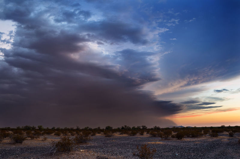 Scenic view of sonoran desert against cloudy sky during sunset