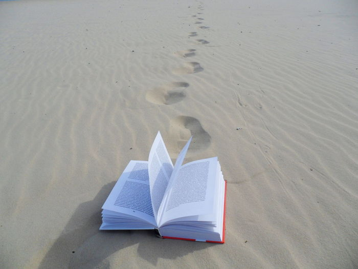open book in the sand Nature Open Book  Open Books Sand Sand Dune Sandy Beach Book Books Minimalism Minimal Beach Sand Water Paper Paper Boat Newspaper Literature Page Arid Landscape Bookstore Hardcover Book My Best Photo 17.62° The Minimalist - 2019 EyeEm Awards