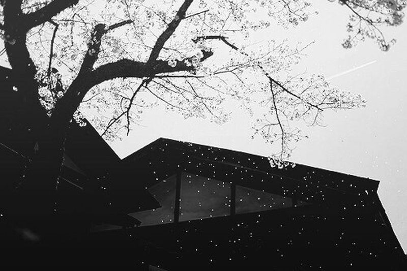 Japanese Japan Tumblr