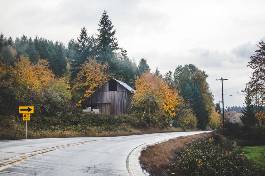 Road curving near an old barn building in fall trees. Perspectives On Nature Architecture Autumn Beauty In Nature Building Exterior Built Structure Day Nature No People Outdoors Road Scenics Sky Tranquility Tree Yellow