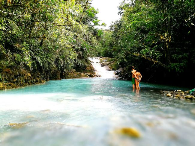 Costarica Water Outdoors Beauty In Nature Costarica Boavida Foresta Happiness