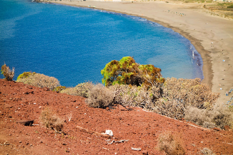 Beach Beauty In Nature Canary Islands Dry Land Ecosystem  Explorer Going For A Walk Hot Weather Island Kanarische Inseln Landscape Médano Nature Ocean Outdoors Plant Sand SPAIN Tenerife Tenerife Island Teneriffa Tourism Traveler Traveltheworld Water Perspectives On Nature