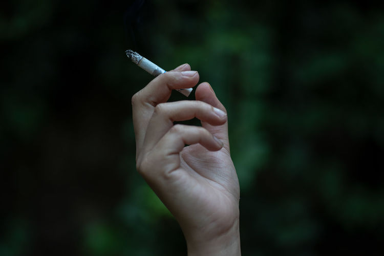 Close-up of hand holding cigarette against trees