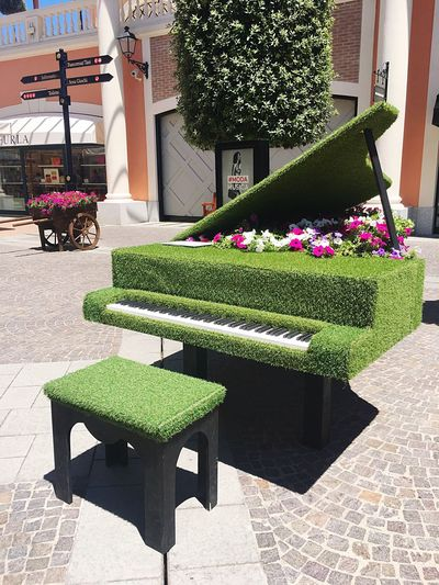 Flower Plant Green Color Outdoors Day No People Piano Strange Things Castel Romano Italy❤️