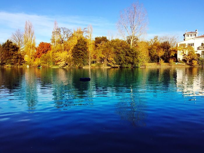 Marseille Parc Borely Water Tree Nature Reflection Waterfront Beauty In Nature No People Outdoors Sky Architecture Lake