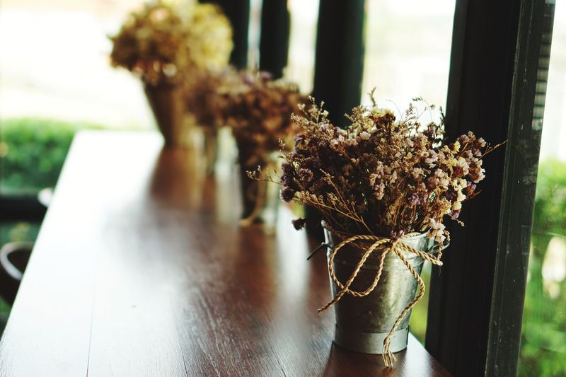 The iron pot has dried flowers on a wooden table in a coffee shop. Window Nature Day Close-up Indoors  No People Flower