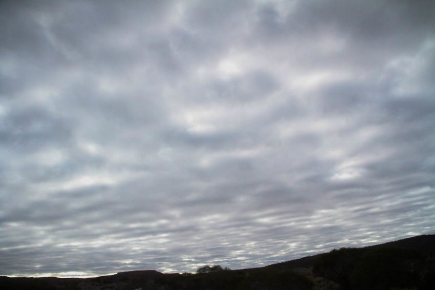 Nullarbor Plain Nullarbor Plain Nullarbor Cloud - Sky Sky Beauty In Nature Scenics - Nature Tranquil Scene Tranquility Nature No People Outdoors Day Dramatic Sky