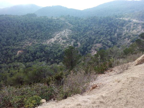 Ibiza Mountain Mountains Verde Vegetacion Plantas Tierra Nature Naturaleza