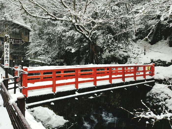 123white and red Snow Kyoto, Japan Bridge Travel Peace And Love White And Red Kifunejinja Winter Nature First Eyeem Photo