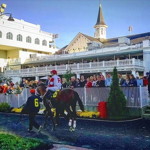 Derbyfan in the 7th race at ChurchillDowns today. Louisville Selfie Kentucky  Autumn November Fallingleaves Selfies Likeforlike Thoroughbredracing Horserace RamseyFarm Autumnleaves Fall Thoroughbredhorse Like4like Thoroughbred Twinspires