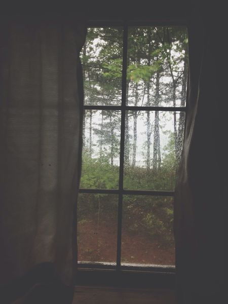 The View From My Window Rain Relaxing Nice Atmosphere