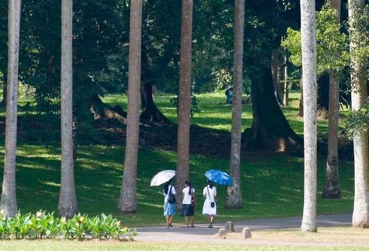 Group of people walking on grassland