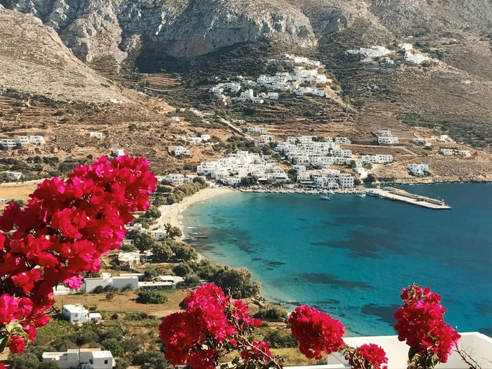 Water Beauty In Nature Nature Rock - Object Rock Formation Outdoors Scenics Tranquility Day No People Mountain Travel Destinations Sea Flower Sky Amorgos Aegiali Greece Greekislands Cyclades