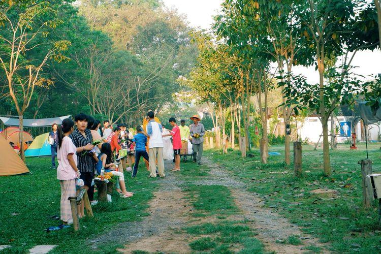 Group of people walking on street amidst trees