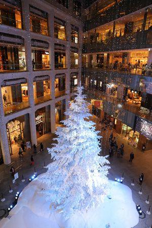 2015  Christmas Christmas Tree Cold Temperature Japan KITTE Shop Snow Tokyo Winter キッテ クリスマス クリスマスツリー
