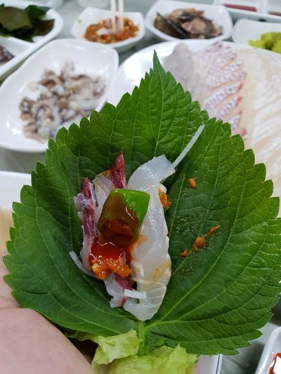 Having a family dinner out. Shashimi Seafoods EyeEm Gallery Saturday Night Sesame Leaf Close-up Food And Drink Green Color