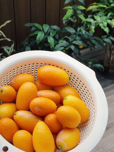 Fruit Homegrown Freshness Fruit Food And Drink Healthy Eating Citrus Fruit Close-up Food Leaf Indoors  Nature Day No People
