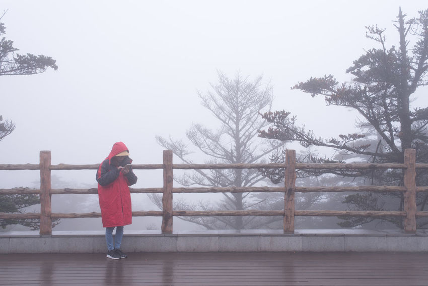 Man in red rain coat playing mobile phone in heavy fog. Mobile Phone Red Coat Cold Temperature Fog Mist One Person Outdoors People Railings Rain Coat Real People Tree Warm Clothing Winter