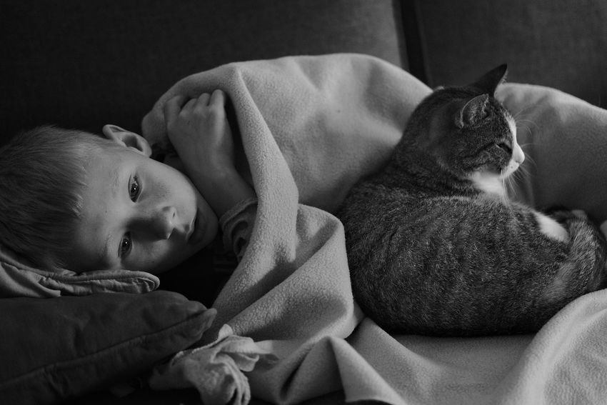 """""""Watching a movie with his friend"""" Son #blackandwhite #Blackandwhitephotography Blackandwhitephotography Black And White Black And White Photography EyeEm Best Shots - Black + White Domestic Cat Whisker Cat At Home"""