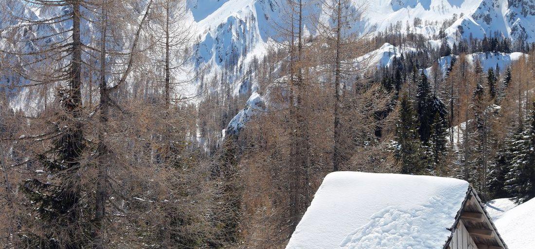 Mountain Mount
