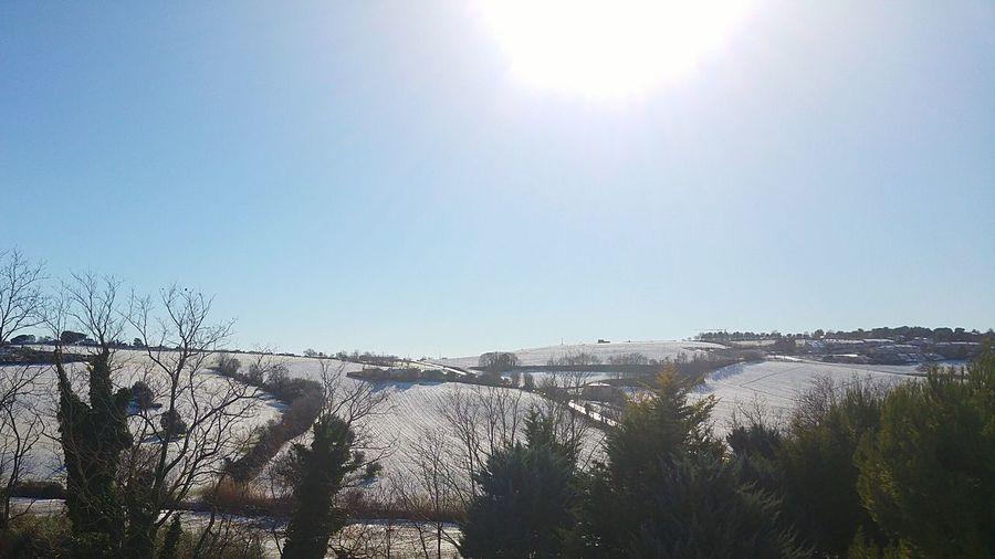Neve Snow ❄ Campi Sky Clear Sky Sunlight Sunny Sun Day Outdoors No People Tree Nature
