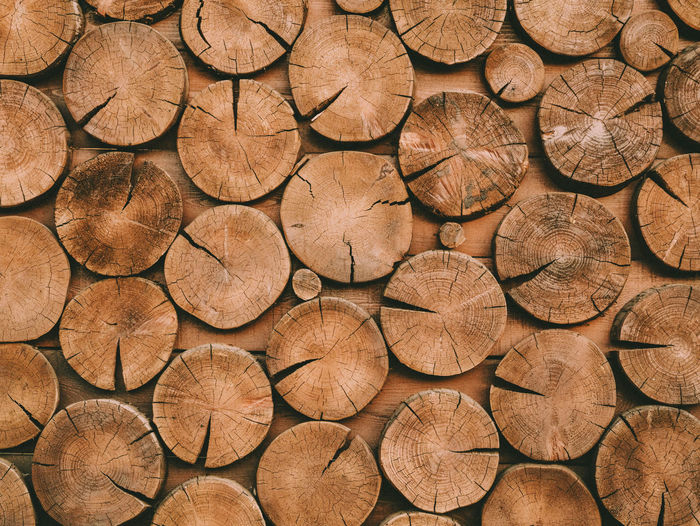 Abstract photo of pile natural wooden logs background, top view Abstract Backgrounds Abundance Backgrounds Brown Chopped Deforestation Environmental Issues Firewood Forest Fuel And Power Generation Full Frame Large Group Of Objects Log Lumber Industry No People Pattern Shape Textured  Timber Tree Tree Ring Wood Wood - Material Woodpile