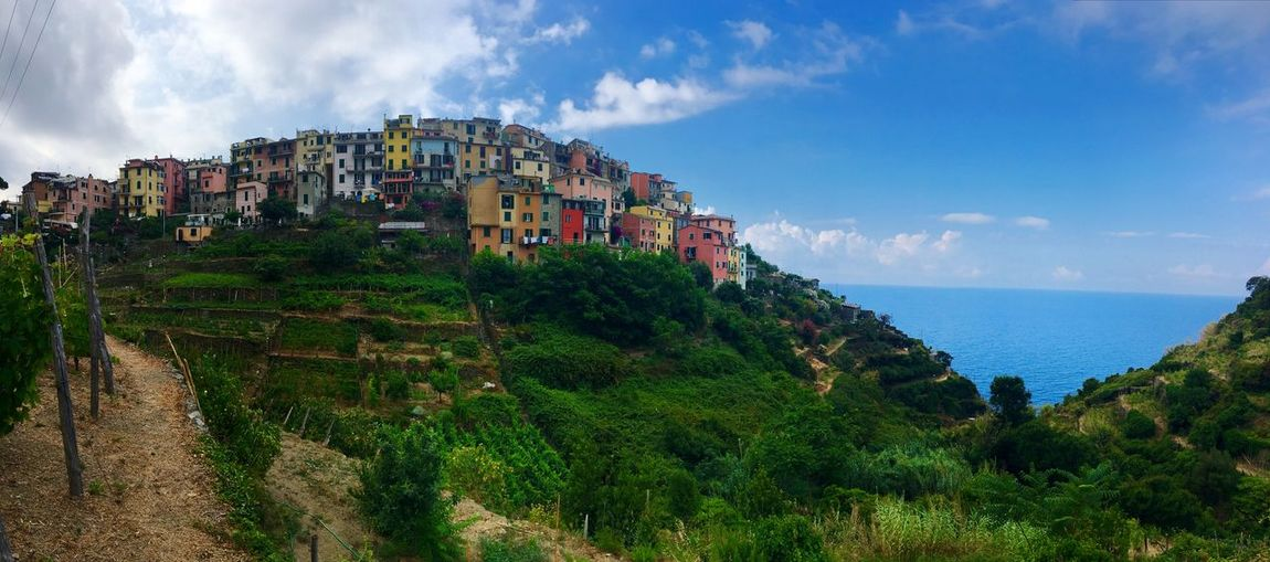 Hiking Italy Cinque Terre Landscape Outdoors Nature