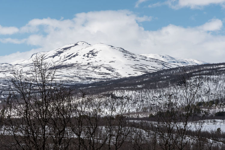 Mountains Abisko 2 Abisko Beauty In Nature Cloud - Sky Cold Temperature Day Idyllic Landscape Mountain Mountain Range Nature No People Non-urban Scene Outdoors Scenics Sky Snow Snowcapped Mountain Sweden Tranquil Scene Tranquility Tree Winter