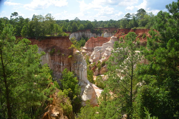 Providence Canyon State Park, Georgia, United States Architecture Beauty In Nature Built Structure Cloud - Sky Day Forest Green Color Growth Land Nature No People Non-urban Scene Outdoors Plant Scenics - Nature Sky Tranquil Scene Tranquility Travel Travel Destinations Tree
