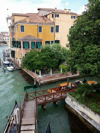 Venice Venezia Venedig Yellow House  Holzsteg From Above  Hugging Trees Trees In Venice Ladyphotographerofthemonth Boats Beliebte Fotos 43 Golden Moments Showcase June Venice Style Sightseeing In Venice Original Experiences Holiday POV Holiday Memories Holiday Time City Of Venice Venice View Venice Canals