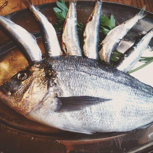 Fish fantasy Fantasie Pesciolando Tuttiinsieme Tuttiinsiemeappassionatamente Malcomuneèmezzogaudio