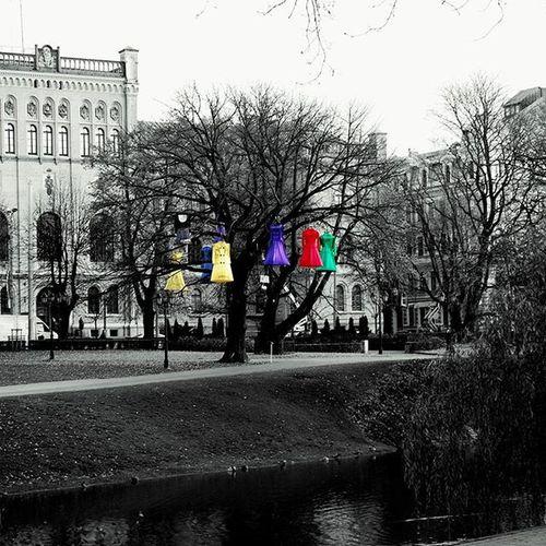 Riga Light Festival 2015 But I will wear my heart upon my sleeve For daws to peck at: I am not what I am. Riga Staroriga2015 Latvia