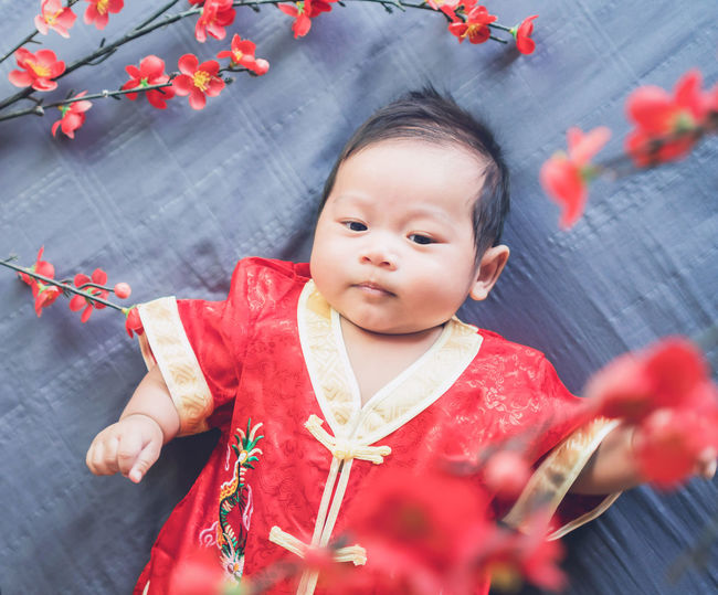 Baby in red dress on blue cloth with flower and looking. Concept Chinese New Year. Asian  Baby Celebration Children Family Greeting Happiness Happy Lifestyle Lucky New Year Red Cheerful China Chinese Congratulation Cute Face Festival Health Kid People Playing Portrait Smile