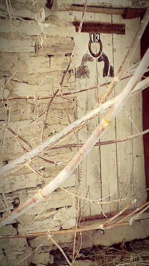 Stable Door Horse Stable Creepy Places Structure And Nature Old Buildings Creepy Old Building