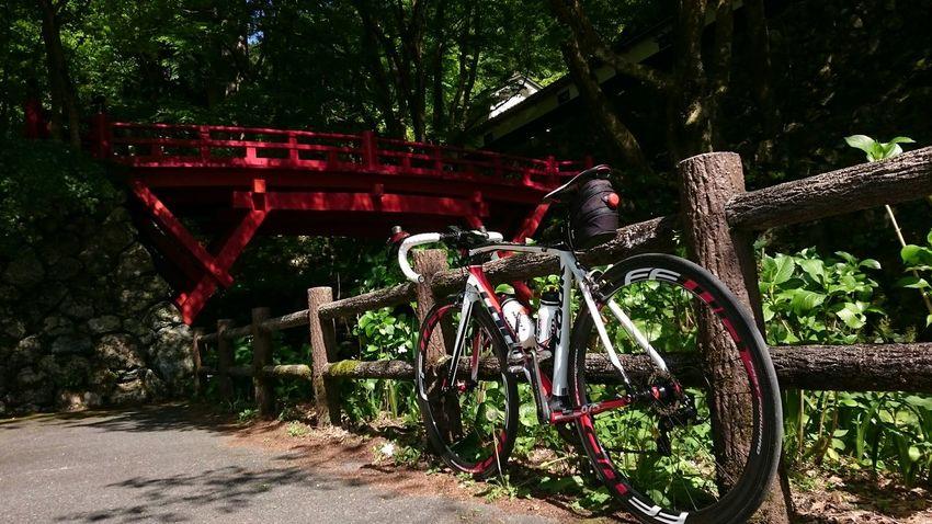 今日は息子と自転車できました。織部の道の駅からですが! Urban Sports